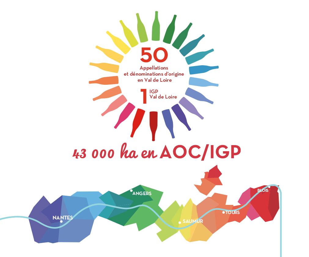 infographie AOC et IGP en Val de Loire