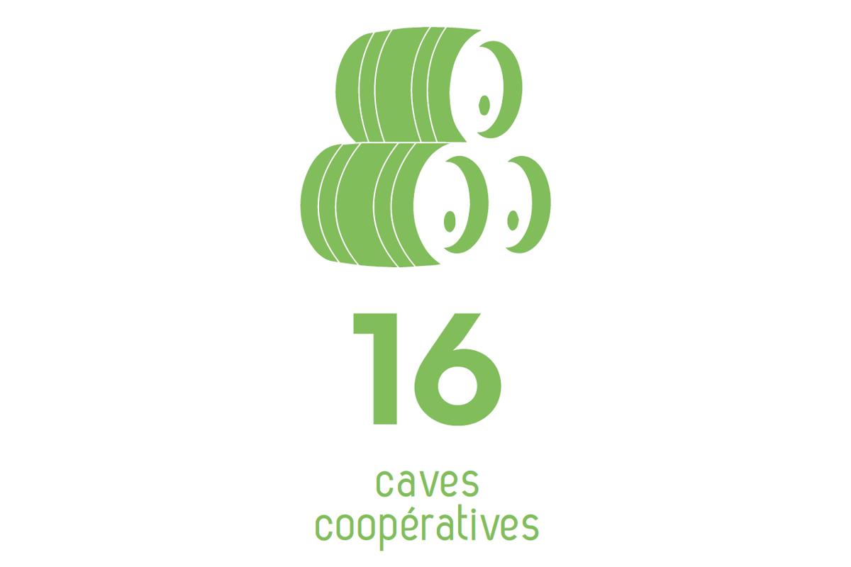 Infographie recensant le nombre de caves cooperatives