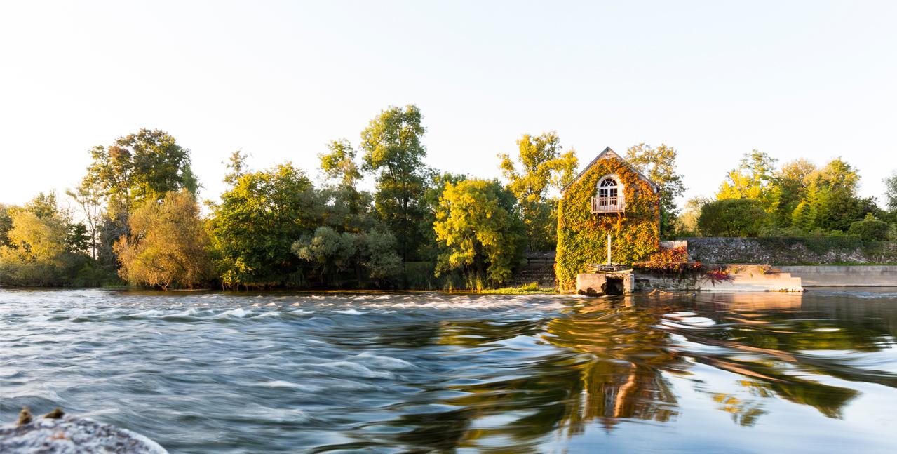 Les berges arborées de la Loire
