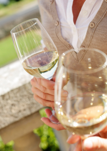 Touraine, un vin fruité et aromatique, qui se décline dans toutes les couleurs