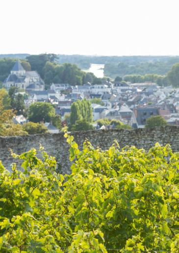Affiche du Touraine Amboise, un vin qui se décline dans toutes les couleurs